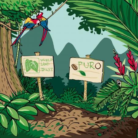 savingtherainforest