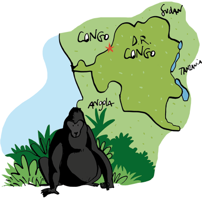 Congo Coffee Growers