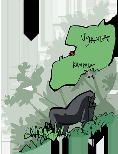 Uganda Rainforest Reserve